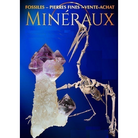 expositions mineralogique avril