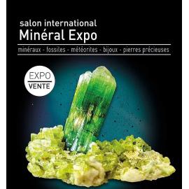 expositions mineralogiques fevrier