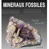 exposition mineralogique aout