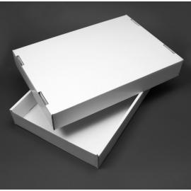 Flats mince 425 x 295 x 65 mm