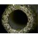 Foret diamanté 5.0 mm pour WK 478