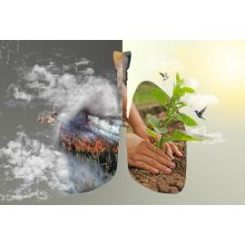 """La trouvaille soutient """"planète Urgence"""""""