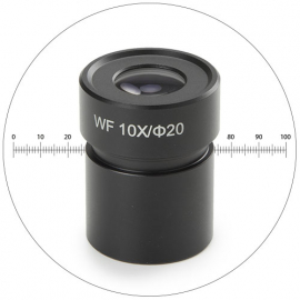 Oculaire novex WF 10x micrometre