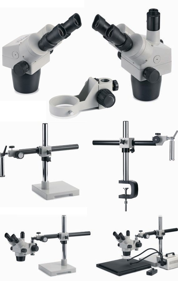 tete de microscopes