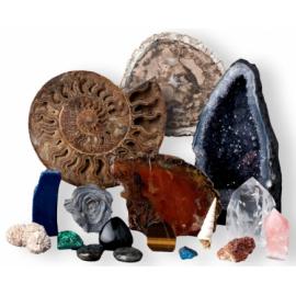 Une sélection de minéraux et de fossiles de notre magasin