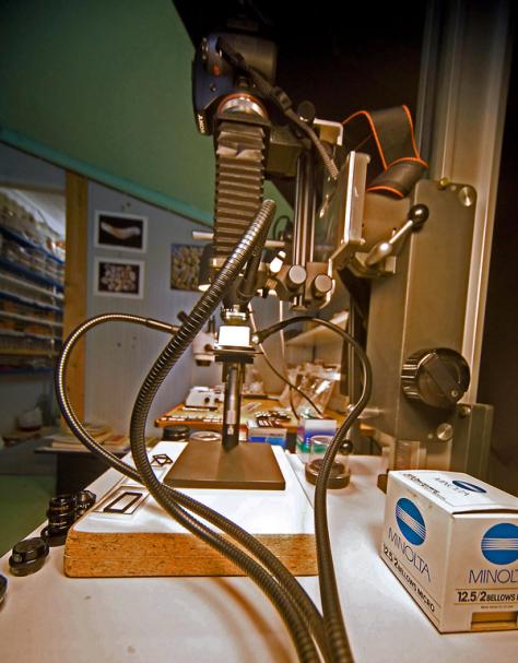 laboratoire microphotographie